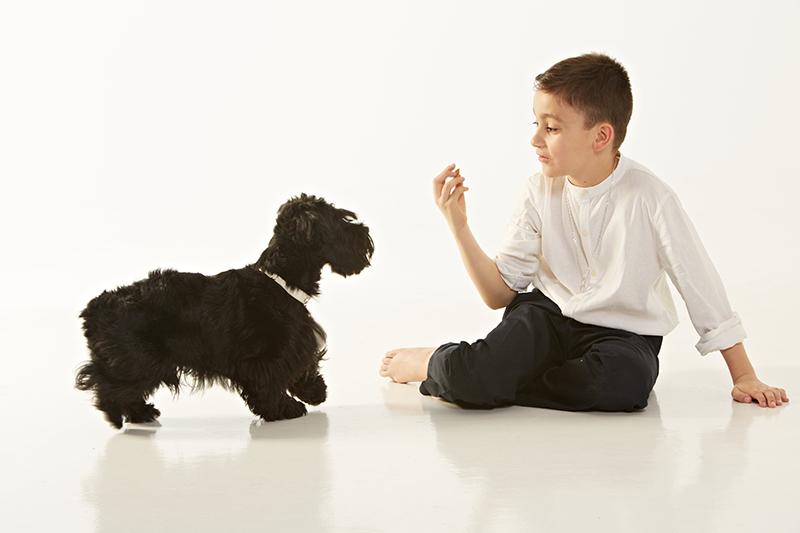 Sesión fotográfica de comunión con tu mascota !!
